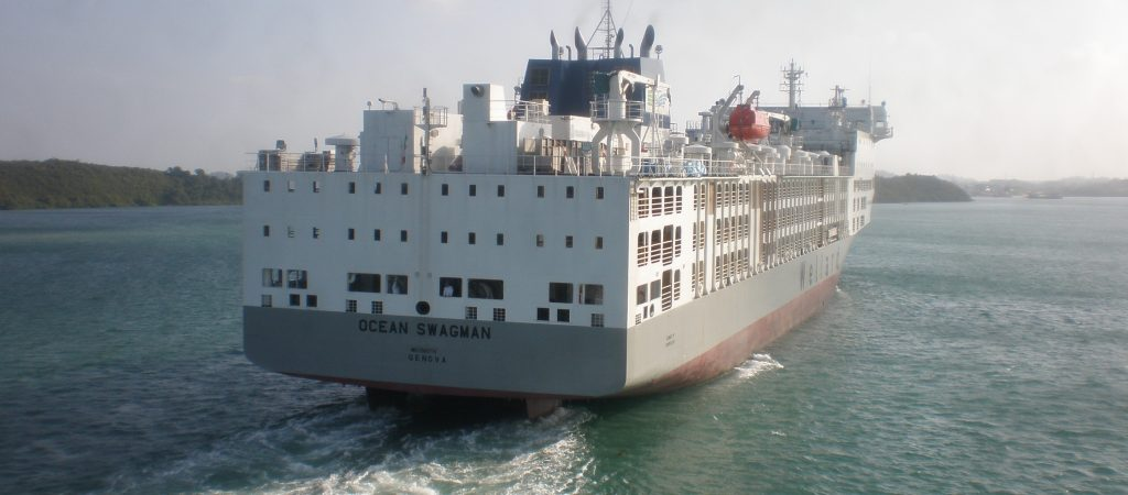 New Building Livestock Carriers