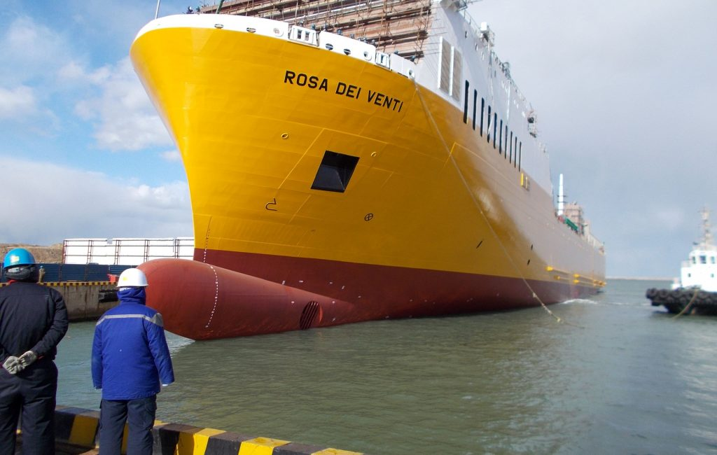 Supervision during construction of Ro-ro cargo